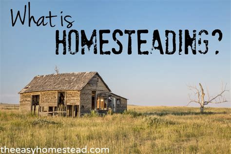 what is homesteading the easy homestead