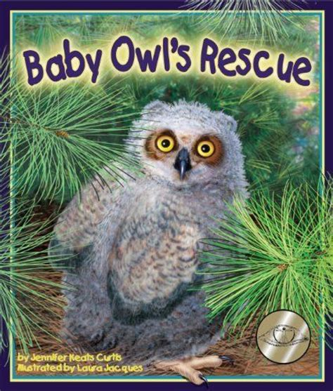 rescue ta 17 best images about owl babies on activities owl pictures and library books