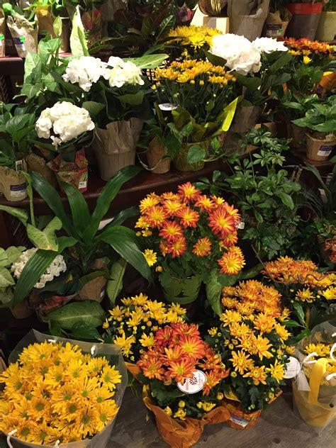 wedding flowers orange county california everyday flower arrangements orange county discount flower arrangements newport ca