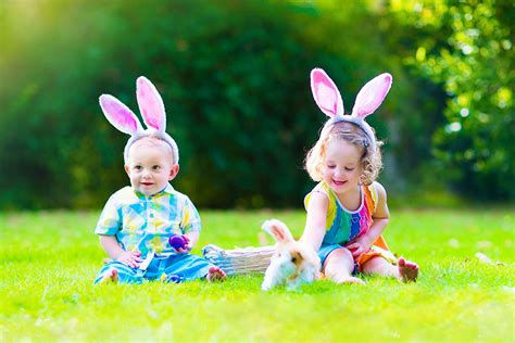 daycare dc choices family day care brisbane childcare ipswich child care surrounding areas