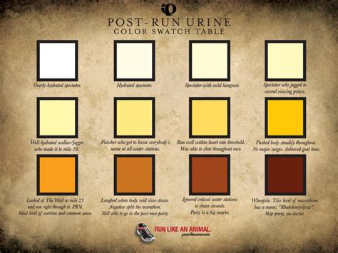 urine color chart what s your ideal color food and on the runfood and on the run