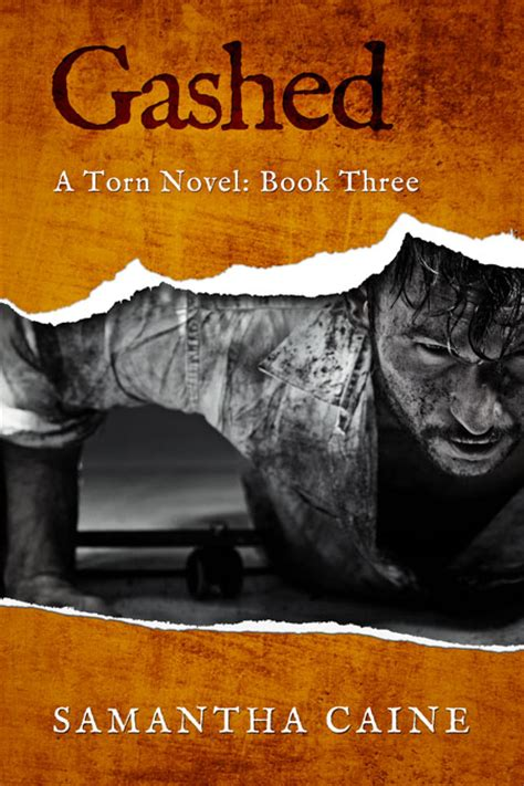 torn torn series torn series suspense series book cover for sale