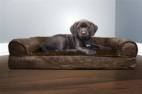 Orthopedic Sofa by Furhaven Plush Suede Orthopedic Sofa Bed Pet Bed Ebay