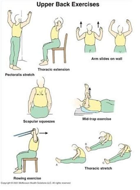 21 best images about back exercises on