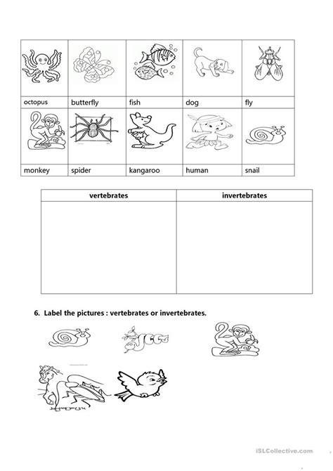 free printable worksheets invertebrates vertebrates and invertebrates worksheet free esl