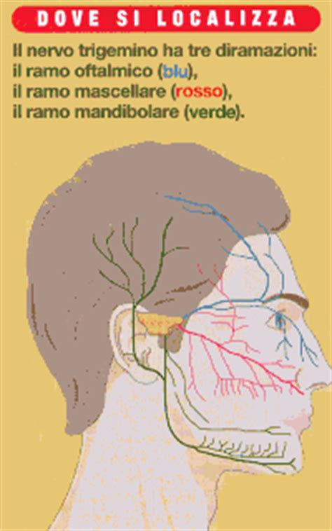 infiammazione testa malattie nervo trigemino