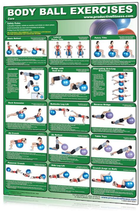 printable exercise ball routines balance ball bosu charts stability swiss ball exercise