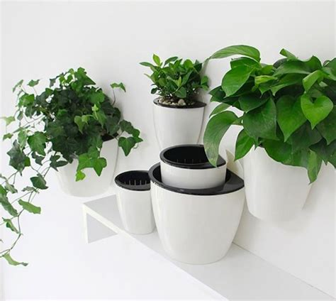 self watering wall planters 30 indoor herb pots and planters to add flavor to any home