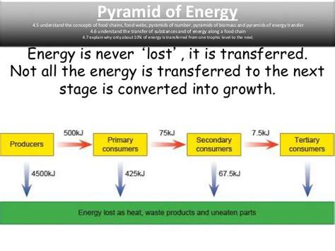 Exle Of Energy Transfer by Igcse Biology Edexcel 4 1 4 17