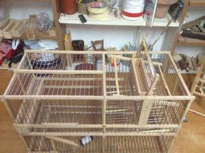 gabbie trappola per uccelli gabbia cinciarella trappola inganno 2 scomparti posot class