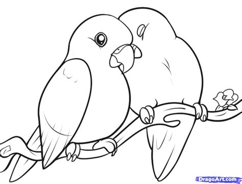 coloring pages love birds how to draw lovebirds step by step birds animals free
