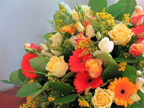 regalare un mazzo di fiori regalare un mazzo di fiori gpsreviewspot