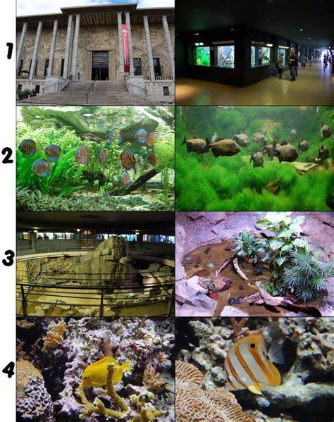 aquarium de la porte dor 233 e les parcs d