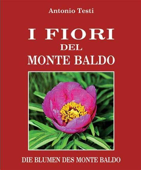 fiori baldo amici della montagna ecco tutti i fiori baldo