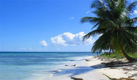 fondo pantalla playas taringa 1024x600 fondo escritorio bonita playa paraiso