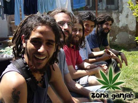imagenes de leones de zona ganjah zona ganjah el reggae en la web