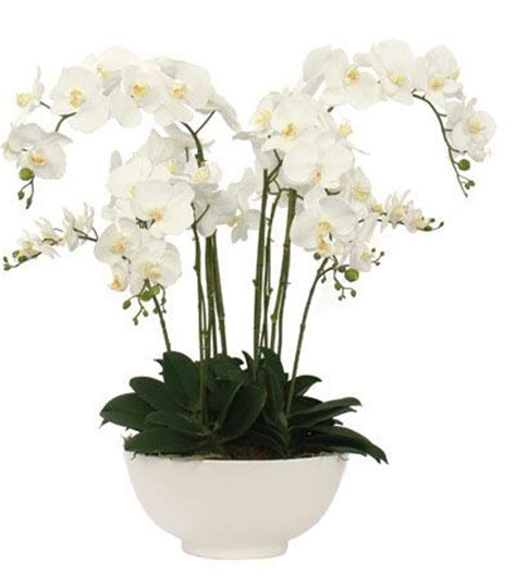 Home Decor Floral Arrangements white orchid faux flower arrangement for the home