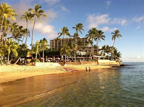 shared with the outrigger club picture of lotus