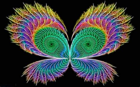 butterfly colors neon colors rock images butterfly hd wallpaper and