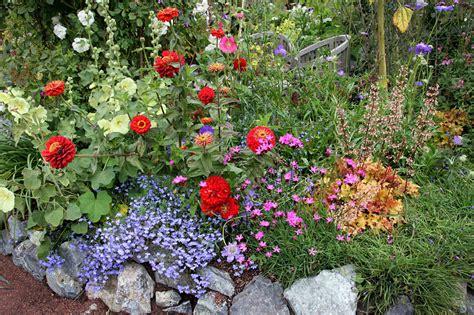 annie s annuals perennials sizzle tastic summer slideshow