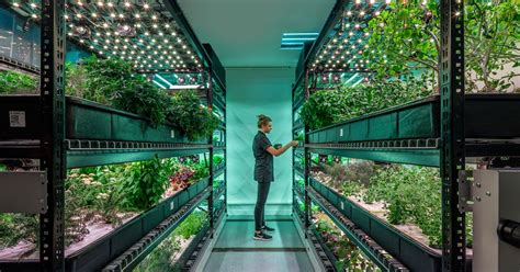 vertical farming disrupt  agriculture industry eater