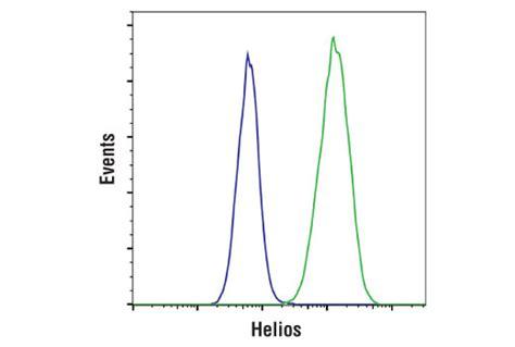 alexa hton helios l helios d8w4x xp 174 rabbit mab 42427