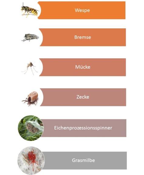 insektenstiche bett plagegeister insekten m 252 cken wespen eesom