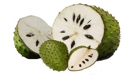 filling tank  durian belanda auto kinetics  sdn