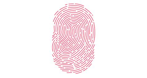 uninstall better touch tool touch id not working properly here s the fix ios hacker