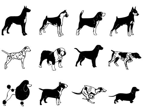 are dogs pack animals black white breed silhouette pack vector