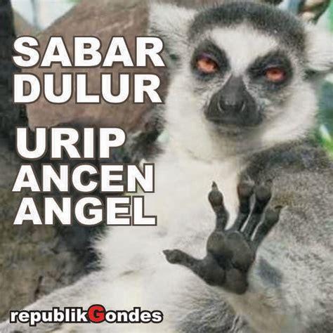 dp bbm jawa pitutur unen2 mbanyol humor lucu kocak gokil terbaru ala indonesia