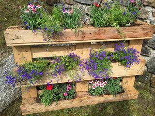 foto vasi di fiori cerca immagini quot vasi di fiori quot