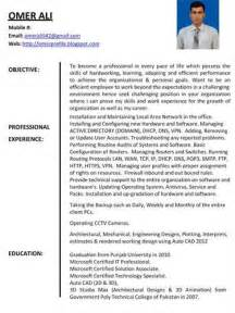 professional profile on resume exles source