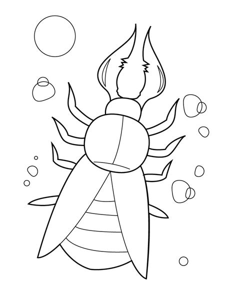 coloring book pages insects free printable bug coloring pages for