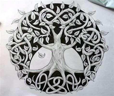 Celtic Tree Of Life Meaning History Symbols Big Chi Celtic Tree Of Pictures