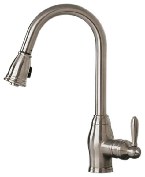 pegasus pull out spray kitchen faucet mediterranean