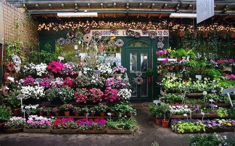The Flower Shop by Florist Shops In Malaysia Lipstiq