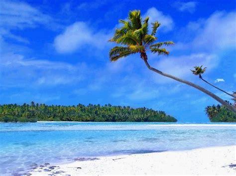 tropical island suraflin blog