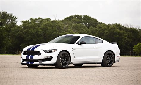 shelby gt   mustang gt  driver mod