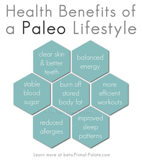 list of healthy fats paleo what is the paleo diet ask dr akiba