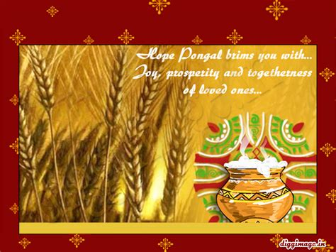 sankranti festival wishes greetings 2011 d i g g i m a g e