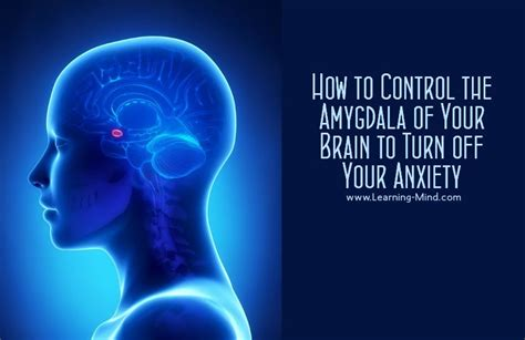 anxiety what turns it on what turns it books how to the amygdala of your brain to turn your