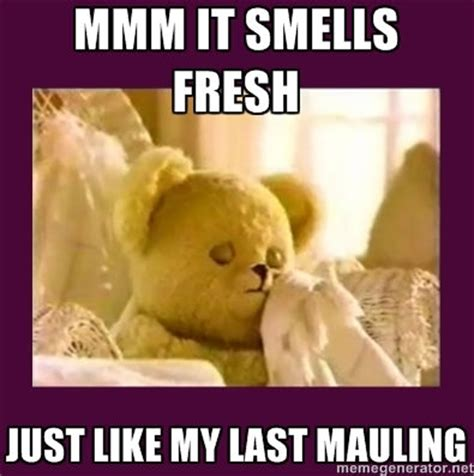 Snuggle Bear Meme - snuggle bear meme not feeling quite so snug hoot holler
