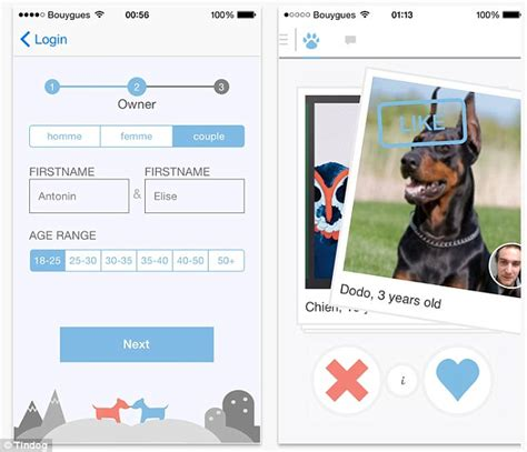 match app for android tindog app helps pet owners find their pawfect match daily mail