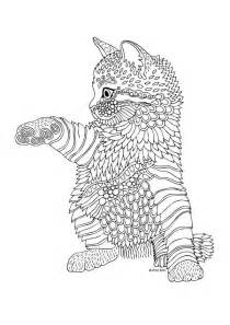 631 colouring cats dogs zentangles images coloring zentangles