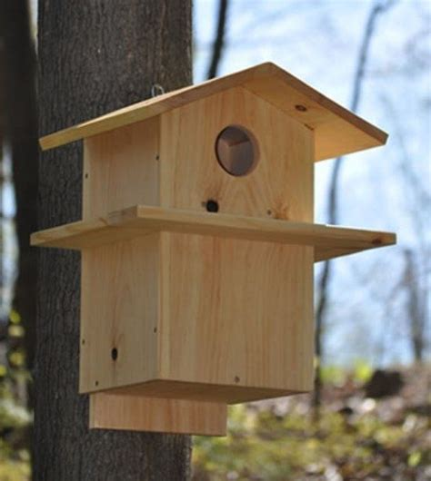 squirrel house plans free squirrel house plans idea home and house