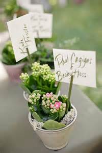 Wedding Favor Plant by Ranch Lodge Wedding From Comes Photo