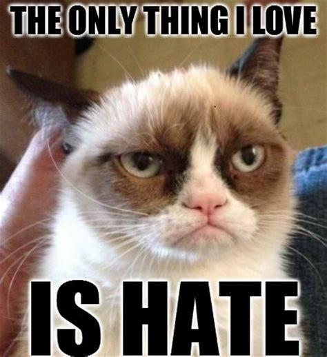 Best Grumpy Cat Memes - what grumpy cat loves grumpy cat meme