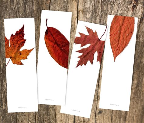 printable bookmarks fall red leaves photography printable bookmark set of 4 diy