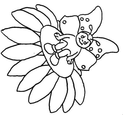 disney butterfly coloring pages baby tinkerbell coloring pages photograph baby butterfly c